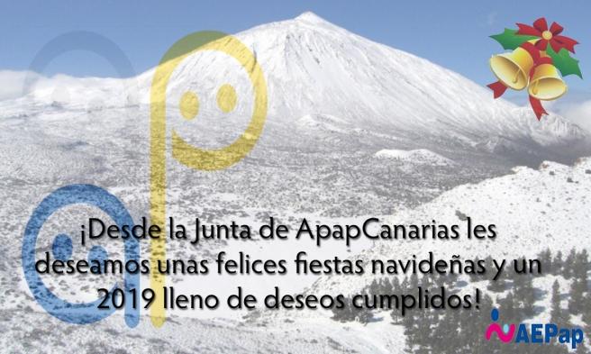 APapCanarias_Felicitación navidad.jpg